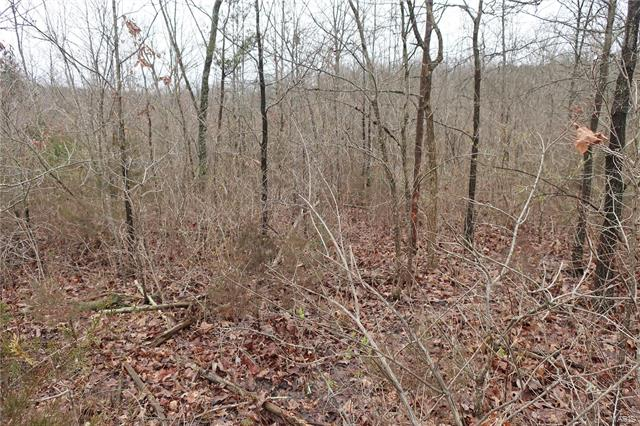 0 9.04 Acres - Dittmer  Road -9