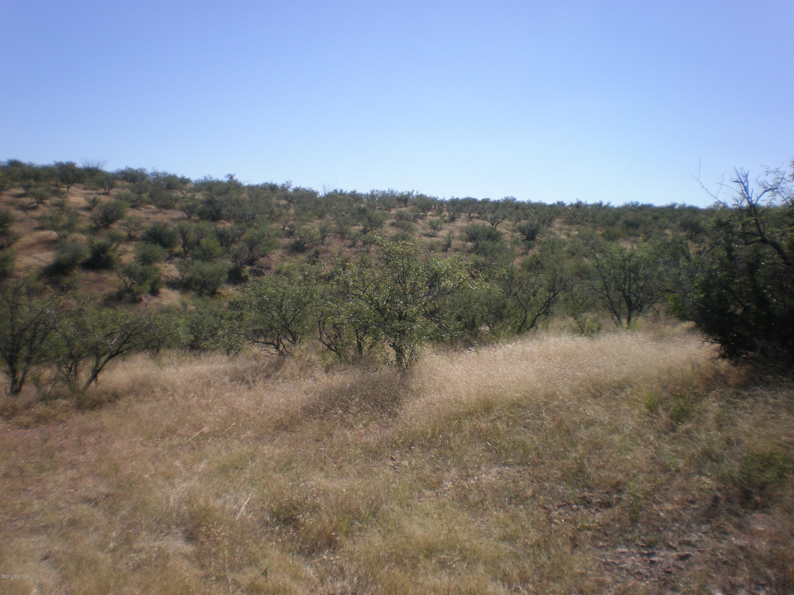5  Vista De Torres -5